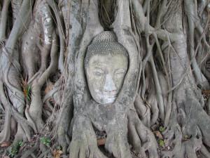 1280px-Ayutthaya_buddha_2[1]